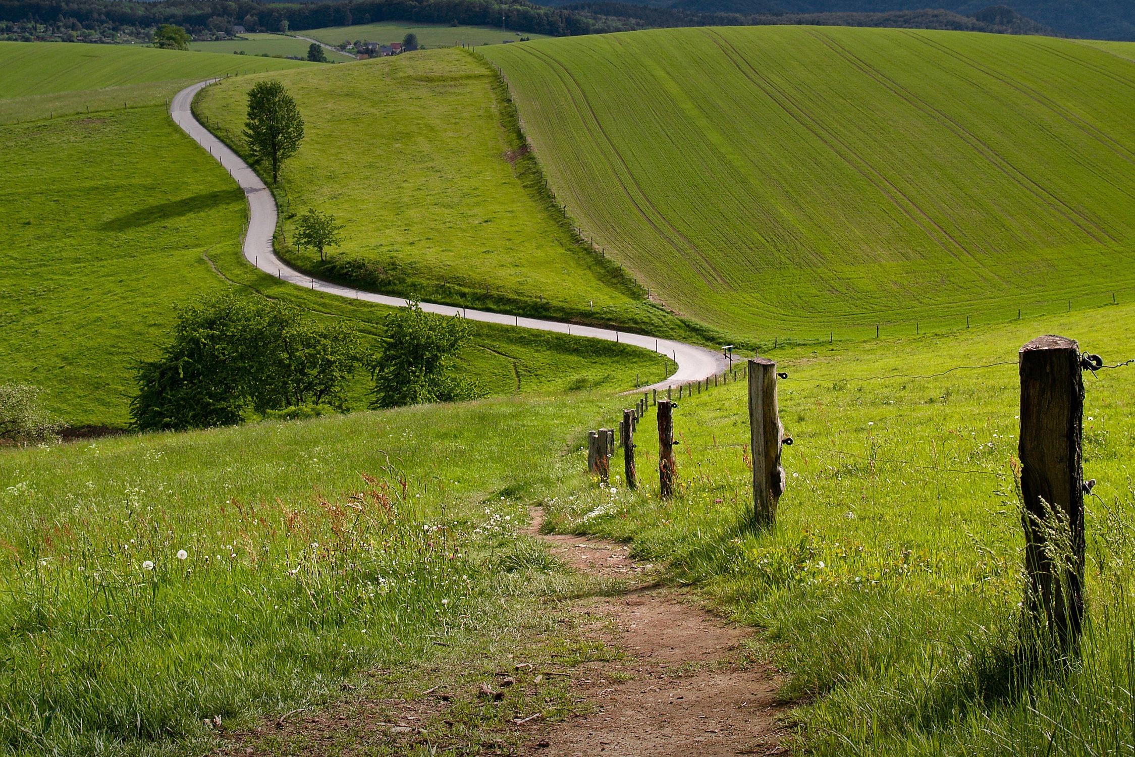 Bild mit Natur, Landschaften, Weg, Landschaft, Wiese, Feld, Felder, Wege und Pfade, Wiesen, Feldweg