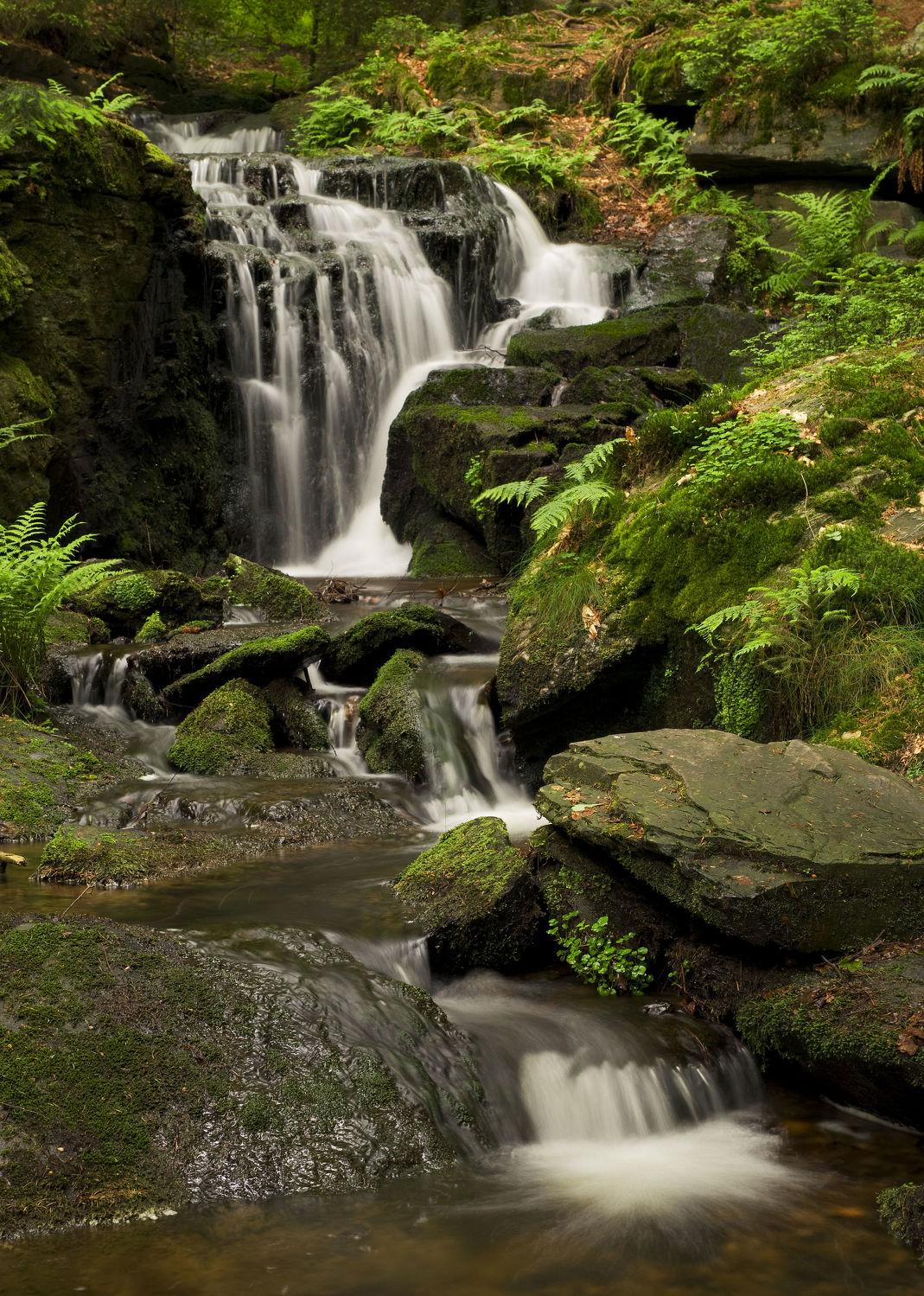 Bild mit Natur, Wasser, Landschaften, Wälder, Wasserfälle, Wald, Landschaft, Wasserfall