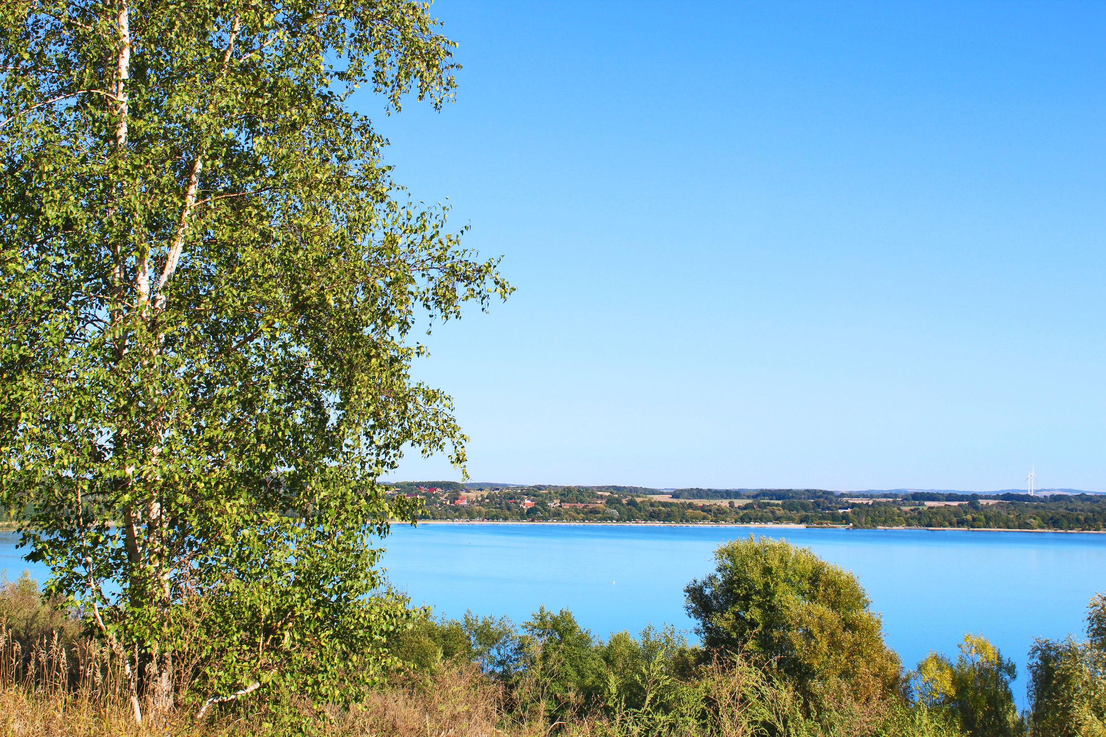 Bild mit Gewässer, Birke, Landschaft, Seeblick, Blauer Himmel, See, Berzdorfer See, landscape, Blick über den See