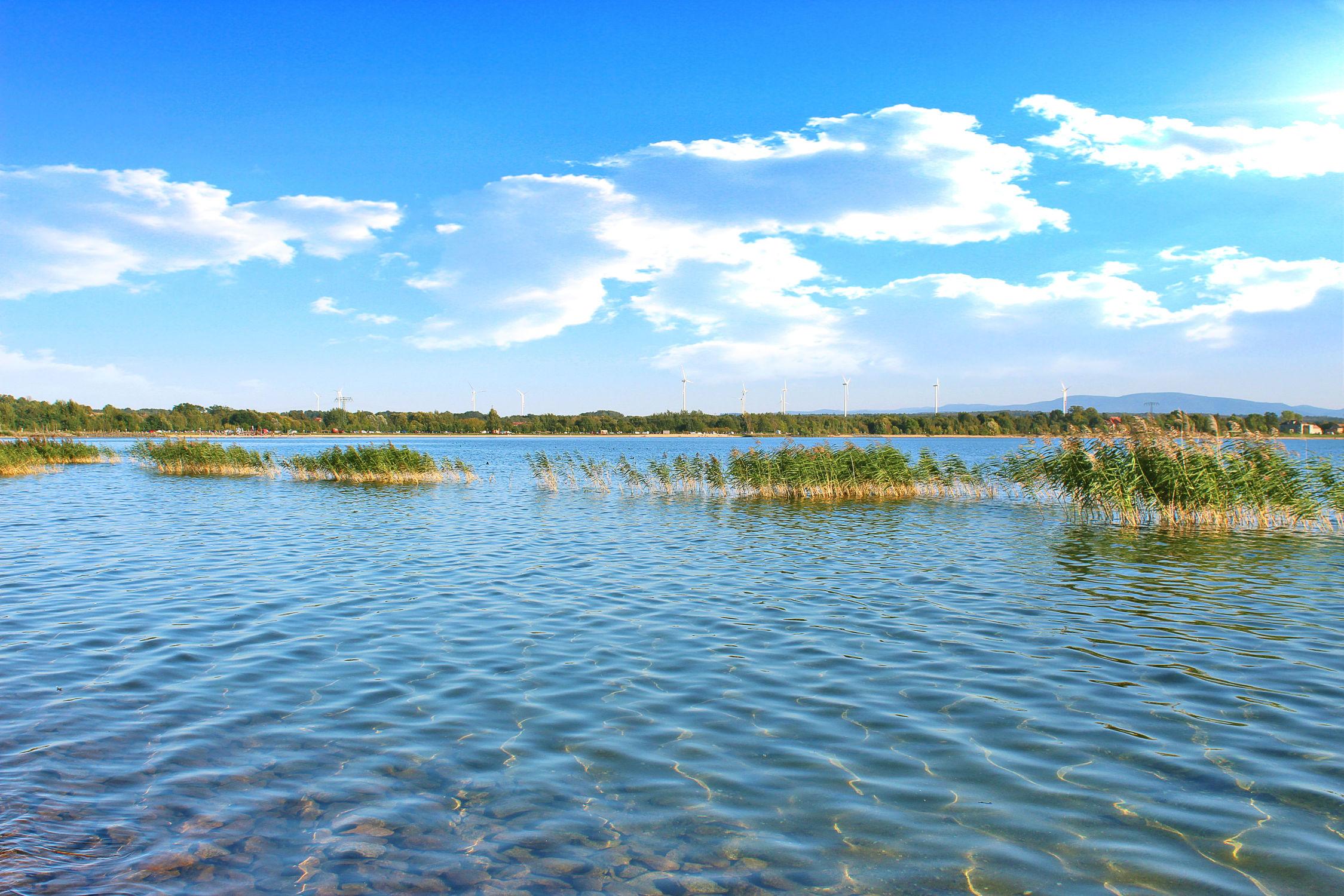 Bild mit Gewässer, Schilf, Wolkenhimmel, Landschaft, Seeblick, Schilfgras, See, Berzdorfer See, landscape, Blick über den See