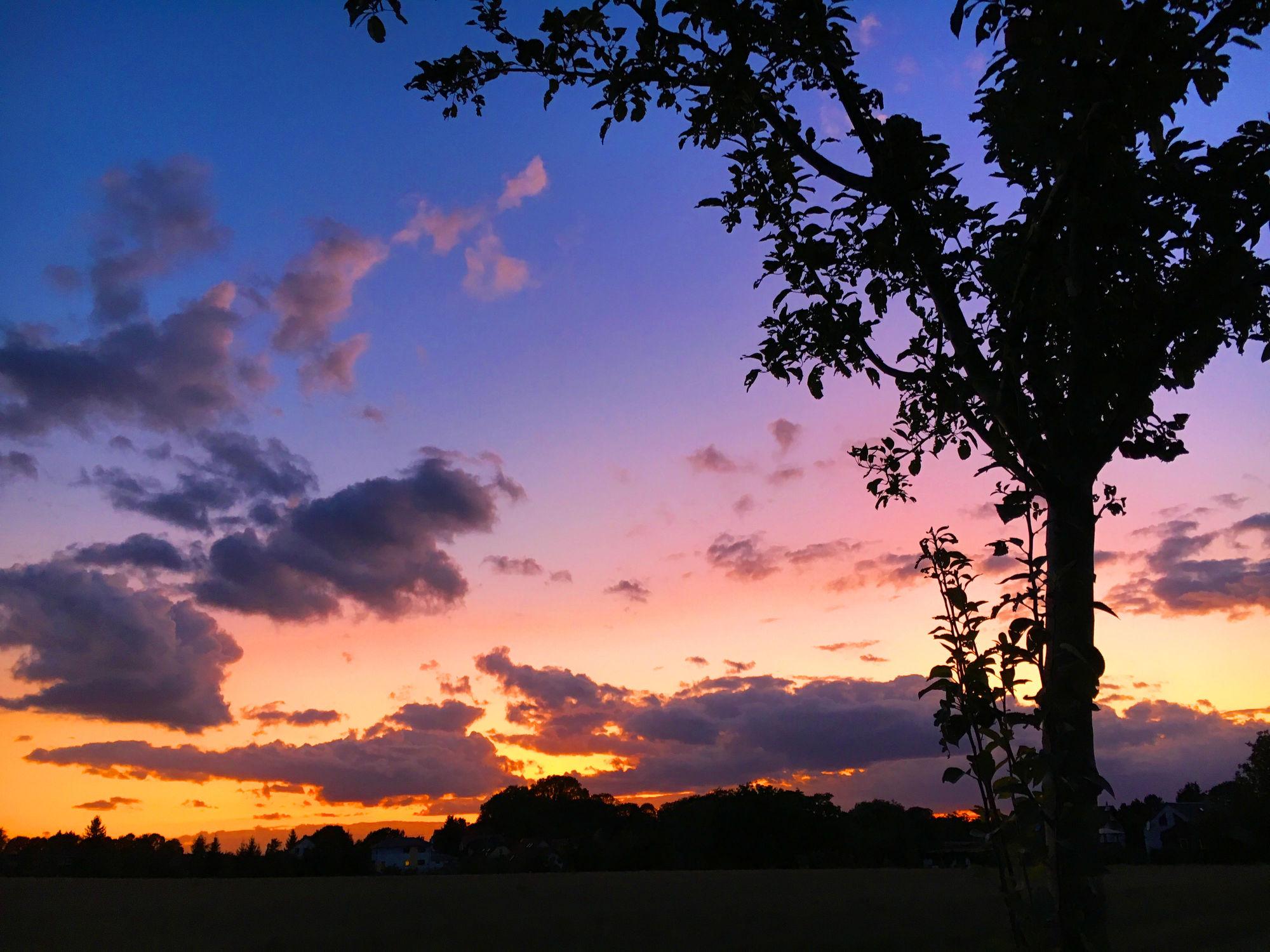 Bild mit Wolken, Horizont, Sonnenuntergang, Sonnenaufgang, Dämmerung, Wolkenhimmel, Sunset, Wolkengebilde, Sky, Wolken am Himmel, Himmel Panorama, Wolkenhimmel Panorama, Weitblick, Wolken Himmel, cloud, clouds, Sky panorama