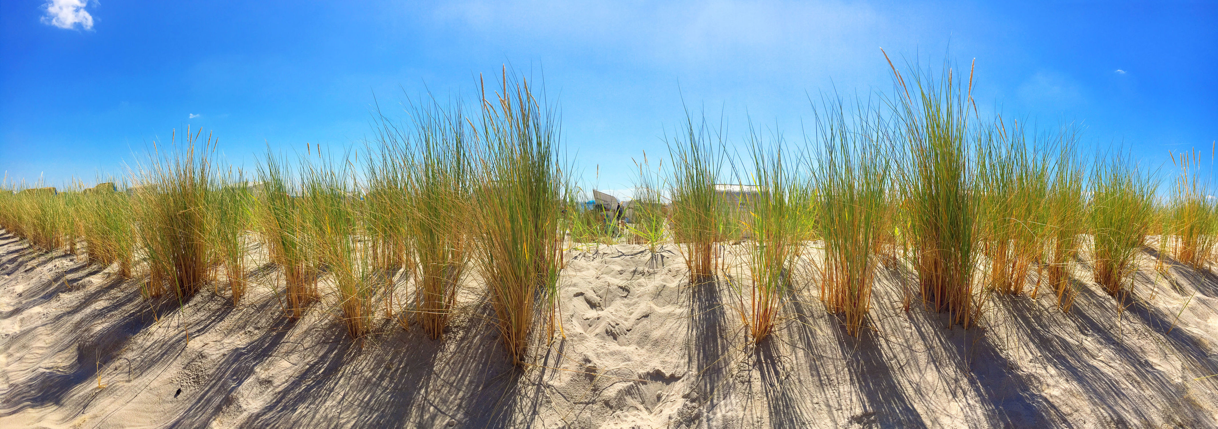 Bild mit Himmel, Sand, Urlaub, Strand, Sandstrand, Panorama, Düne, Dünengras, Holliday, Schilfgras, Dünen Schilf, Strandpflanzen, Strandpflanze, Dünen panorama, Dünenblick