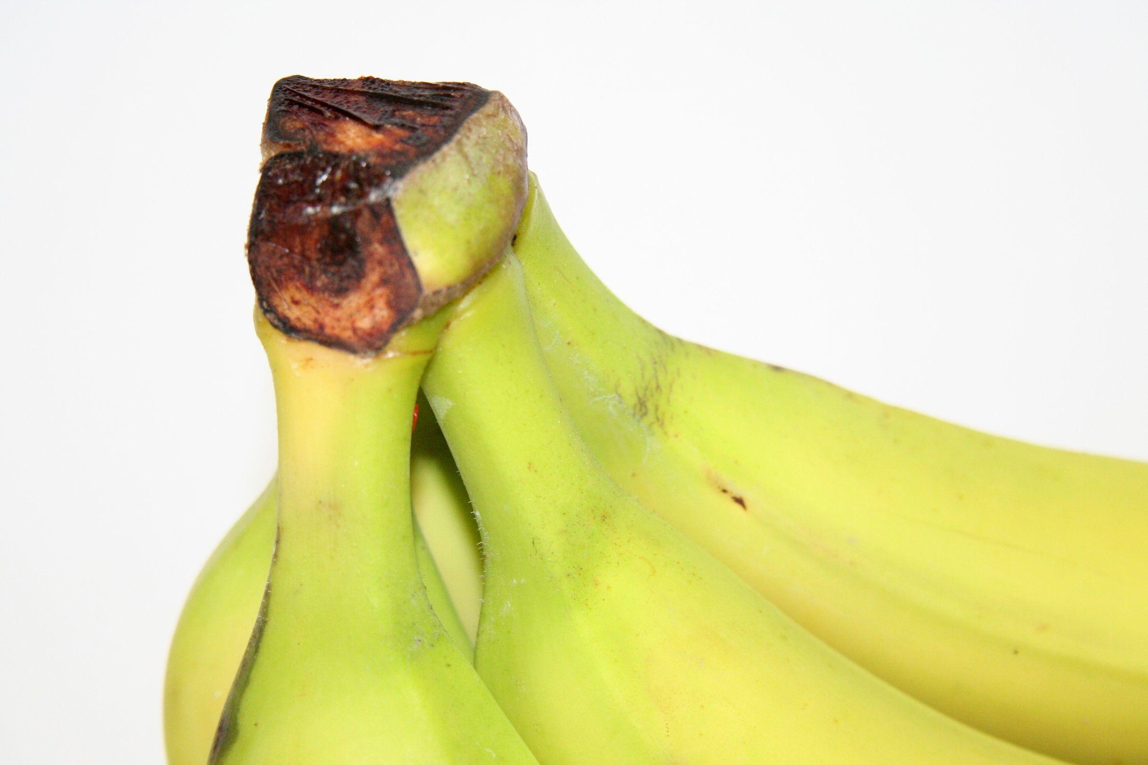 Bild mit Früchte, Bananen, Frucht, Banane, Obst, banana