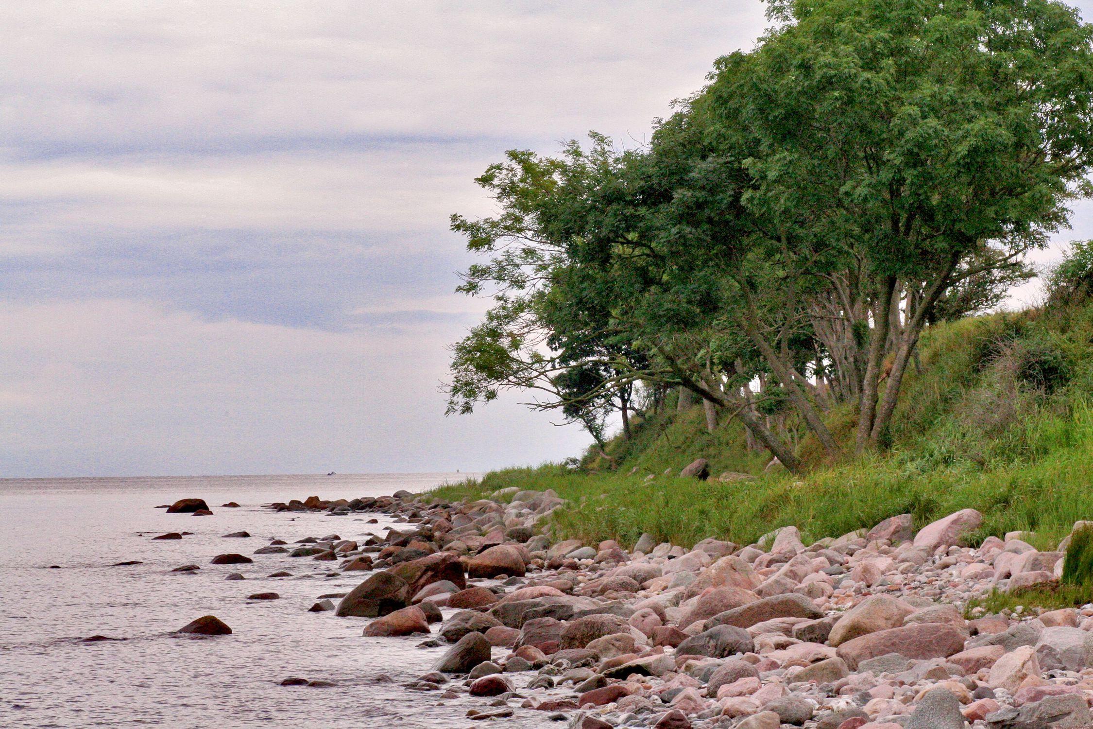 Bild mit Natur, Elemente, Wasser, Pflanzen, Gräser, Landschaften, Himmel, Bäume, Gewässer, Küsten und Ufer, Felsen, Meere, Strände, Buchten
