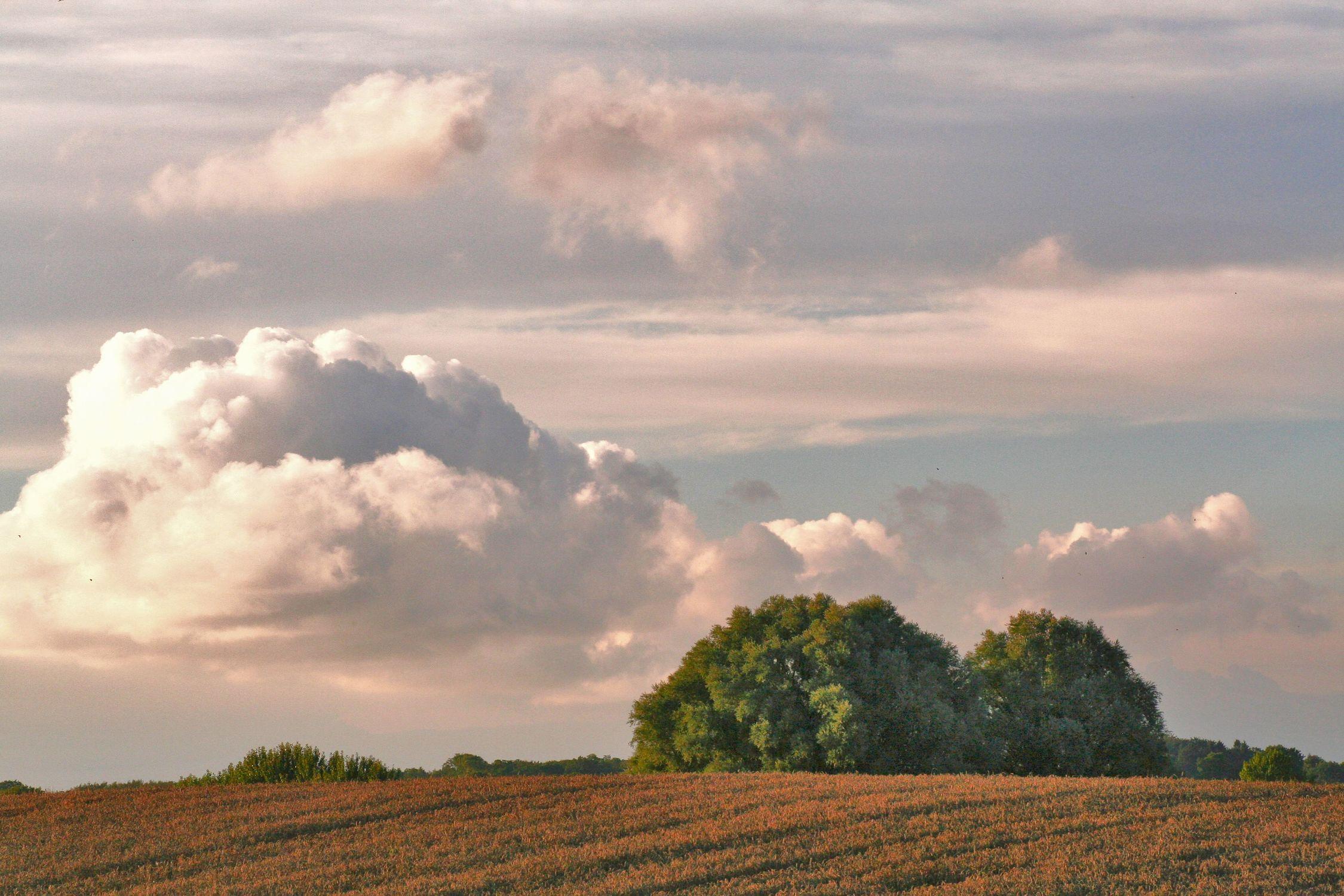 Bild mit Natur, Pflanzen, Gräser, Landschaften, Berge und Hügel, Himmel, Hügel, Bäume, Jahreszeiten, Wolken, Orte, Horizont, Siedlungen, Architektur, Bauwerke, Gebäude, Tageslicht, Sommer, Bauernhöfe, Ländliche Gebiete