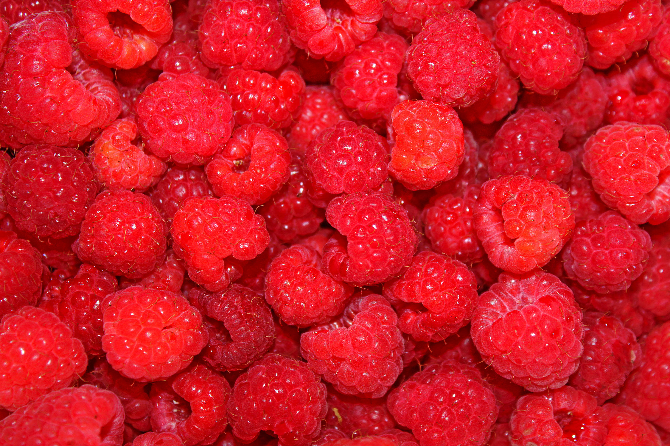 Bild mit Früchte, Lebensmittel, Essen, Rot, Frucht, Obst, Himbeere, Himbeeren, Küchenbilder, Küche