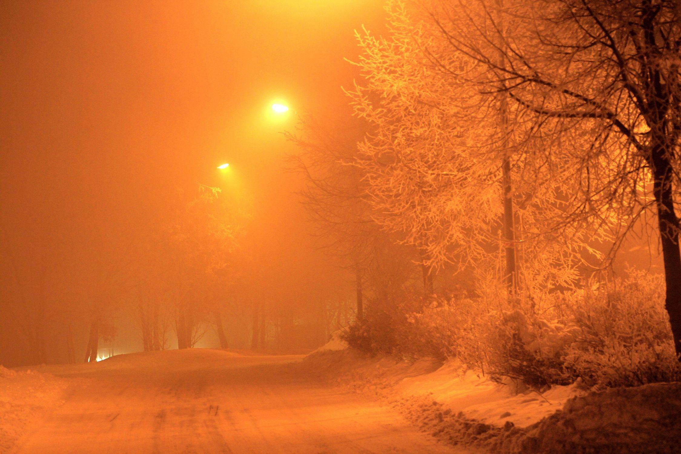 Bild mit Natur, Pflanzen, Landschaften, Himmel, Bäume, Jahreszeiten, Winter, Wetter, Schnee, Sonnenaufgang, Nebel, Schneestürme, winterlandschaft