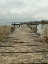 Bild mit Herbst, Steg, Bootssteg, holzstege