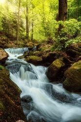 Bild mit Sommer, Wald, Landschaft, Bach, Wasserfall, Harz, Fluss, Ilsefälle