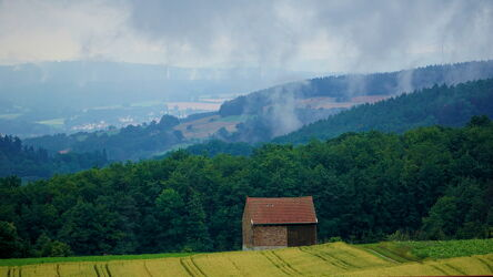 Bild mit Wald, Waldlichtung, Feld, Hütte