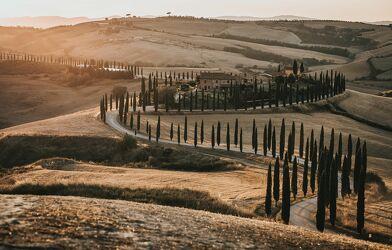 Bild mit Bäume, Sonnenuntergang, Italien, Landschaft, toscana