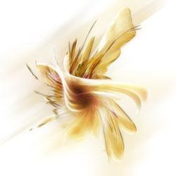 orchid fantasinemsis