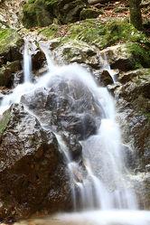 Bild mit Wasserfall Fischbach
