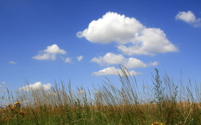 Bild mit Himmel, Wolken, Sommer, Wolkenhimmel, Düne, Dünen, Wolkengebilde, Dünengras, Wolkenblick, Wolke, Strandhafer