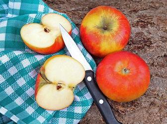 Bild mit Küchenbild, Apfel, Apfel, Küchenbilder, Obst & Gemüse, KITCHEN, Küche, messer, küchenmesser, Roter Apfel