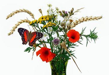 Bild mit Natur, Pflanzen, Blumen, Getreide, Mohn, Schmetterlinge, Blume, Pflanze, Mohnblüte, Blumenstrauß, Floral, Stilleben, Blüten, Florales, Schmetterling, blüte, Gerste, vase, blumenstrauss