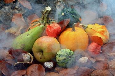 Bild mit Früchte, Herbst, Nebel, Blätter, Frucht, Obst, Birne, Birnen, Waldboden, Apfel, Apfel, Herbstblätter, Food, Stilleben, Kürbisse, Halloween, Trick or treat, Süßes oder Saures, Kürbis, kastanien, kastanie, lampions, lampion