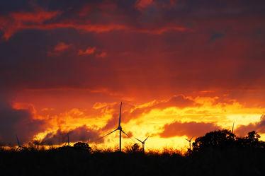Feuriger Sonnenuntergang am Feld