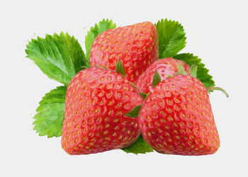 Bild mit Früchte, Beeren, Malerei, Frucht, Obst, Erdbeere, Erdbeeren, Küchenbild, Stillleben, Küchenbilder, KITCHEN, frisch, Küche, Kochbild, gemalte Früchte