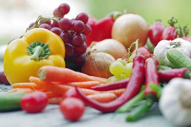 Obst Garten frische Früchte