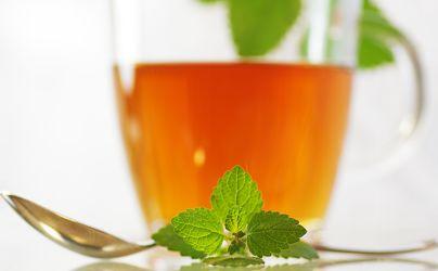 Frischer Tee und grüne Kräuter