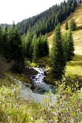 Bergbach klares Wasser