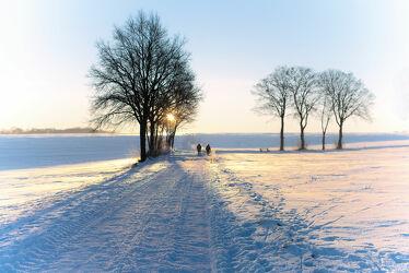 Winterspaziergang im Morgenlicht