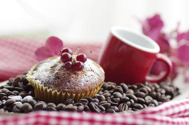 Bild mit Küchenbilder, Kaffee Speziallitäten, KITCHEN, cafe, Küche, Coffee