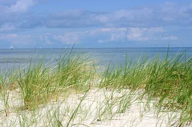 Bild mit Strände, Sonne, Strand, Sandstrand, Meerblick, Ostsee, Meer, Düne, Dünen, Dünengras