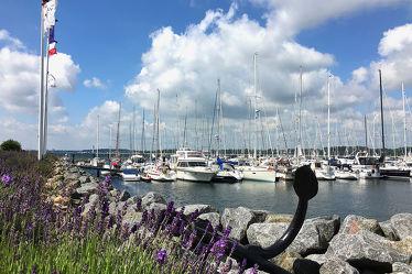 Bild mit Felsen, Urlaub, Lavendel, Häfen, Ostsee, Meer, Hafenstadt, Steine, Impressionen