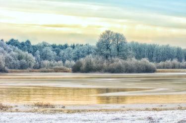 Bild mit Natur,Landschaften,Nadelbäume,Winter,Schnee,Gewässer,Seen,Landschaft,See,Weihnachten,winterlandschaft,Winterlandschaften,Kälte,Frost,winterwunder