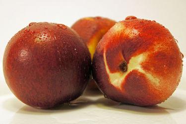 Bild mit Früchte,Lebensmittel,Küchenbild,KITCHEN,Küche,Nektarinen