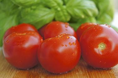 Bild mit Früchte,Lebensmittel,Tomate,Tomaten,Küchenbild,Küchenbilder,Küche,Küchen,Basilikum