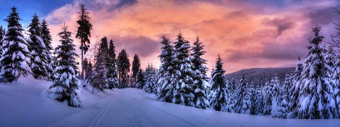 Bild mit Bäume, Winter, Schnee, Eis, Wälder, Sonnenuntergang, Urlaub, Sonnenaufgang, Tannen, Wald, Märchenwald, Weihnachten, Winterzeit, Kälte, Frost, Sonnenstrahlen, skiurlaub, märchen