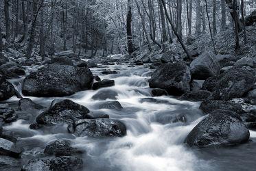 Bild mit Natur, Wasser, Gewässer, Flüsse, Felsen, Frühling, Stein, Wasserfälle, Steine, Wasserfall, Elfen, Harz, frühjahr, schwarz weiß, Fluss, Gestein, Fels, SW, Ilsetal, Feenland, Elfenland, feen