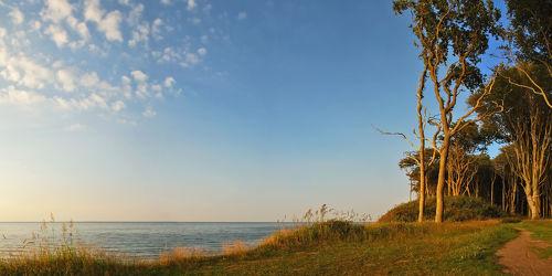 Bild mit Natur, Landschaften, Bäume, Gewässer, Wälder, Meere, Urlaub, Wald, Baum, Strand, Ostsee, Meer, Landschaft, Natur und Landschaften, Nienhagen