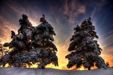 Bild mit Landschaften, Nadelbäume, Winter, Schnee, Sonnenuntergang, Sonnenaufgang, Landschaft, Weihnachten, winterlandschaft, Winterlandschaften, Mansfeld Südharz, Harz, Kälte, Frost, winterwunder