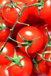 Bild mit Tomate, Tomaten, Gemüse, Küchenbild, Food, Früchte & Lebensmittel, Küchenbilder, KITCHEN, Küche, Küchen