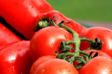 Bild mit Früchte, Lebensmittel, Frucht, Tomate, Tomaten, Gemüse, Küchenbild, Küchenbilder, KITCHEN, Küche, Paprika