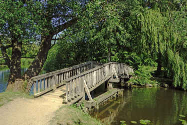 Bild mit Bäume, Wälder, Brücken, Wald, Brücke, Fluss, Wanderwege