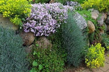 Bild mit Steine,Extras,Steinwall,Begrünung,Bepflanzung