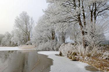 Bild mit Schnee,Eis,Gewässer,Seen,Sonne,Winterzeit,Sonnenlicht,Ufer,Raureif