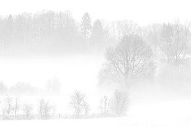 Bild mit Bäume,Winter,Schnee,Wolken,Sträucher,Nebel,Landschaft,Felder,Winterzeit,Wiesen,Idylle,Zäune