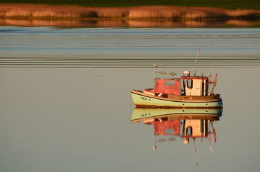 Bild mit Sonnenuntergang,Sport,Schilf,boot,Ausspannen,Abendstille,Bodden,reet,Rügen,Angler,Ufer,Röhrricht,Wasserwellen