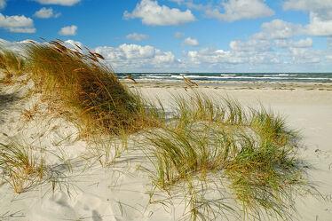 Bild mit Gräser, Himmel, Wolken, Herbst, Urlaub, Ostsee, Meer, Dünen, Küste, Erholung