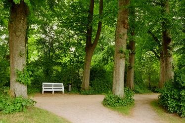 Bild mit Bäume, See, Wanderwege, Schatten, Ruheplatz, Eutin, Kreuzung, Aussspannen, Eutiner