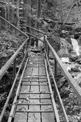 Bild mit Natur, Bäume, Holz, Wald, Brücke, Wasserfall, Fotografie, schwarz weiß, dekorativ, Holzbrücke, zeitlos