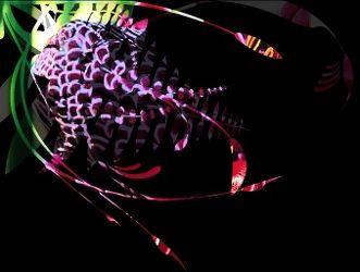 Bild mit Blütenzauber, blütenkompositionen, Blüten, Bildercollagen, Stillleben & Collagen, Collagen, Collage, Blumen Collagen