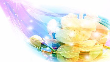 Bild mit Blütenzauber, blütenkompositionen, Blüten, Bildercollagen, Stillleben & Collagen, Collagen, Digitale Blumen, Blumen Collagen