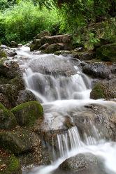 Bild mit Landschaften, Bäume, Gewässer, Wälder, Flüsse, Wasserfälle, Wald, Baum, Landschaft, Wasserfall, Fluss